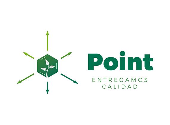6-Point